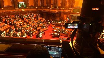 10 - Il Senato riunito per il voto sul dl sicurezza