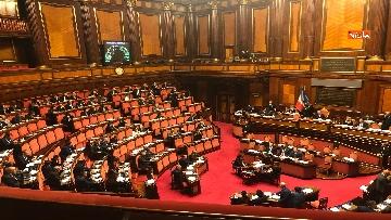 2 - Il Senato riunito per il voto sul dl sicurezza