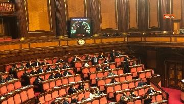 1 - Il Senato riunito per il voto sul dl sicurezza