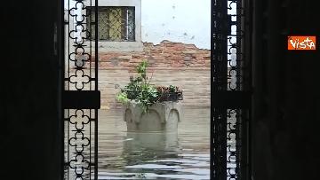 5 - Venezia sotto l'acqua, ecco come continua la vita quotidiana