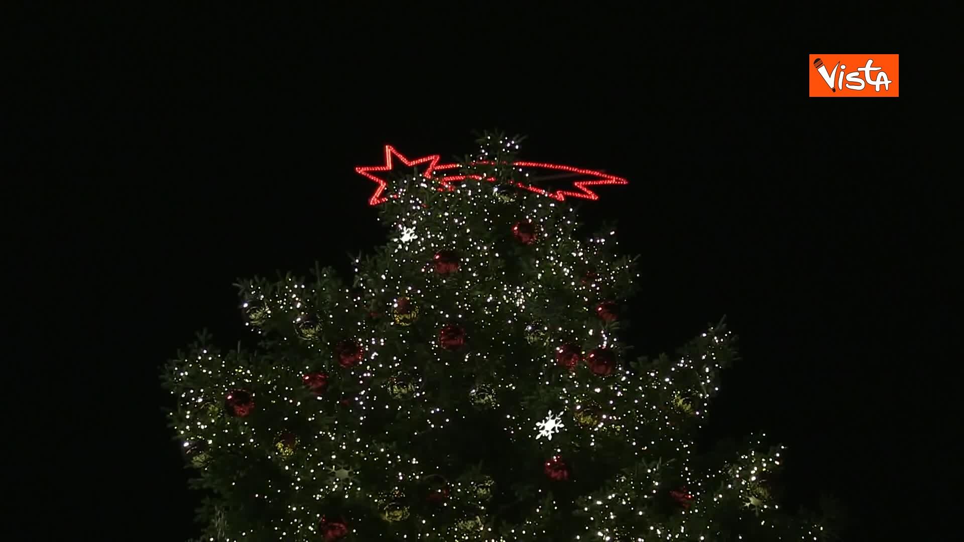 'Spelacchio' l'albero di Natale di Roma, si accende in Piazza Venezia_04