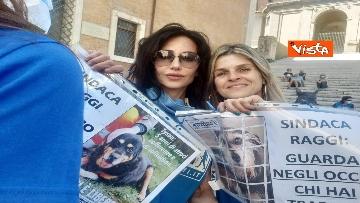 """5 - """"Gli animali non sono vite di serie B"""": la protesta delle associazioni animaliste in Campidoglio"""