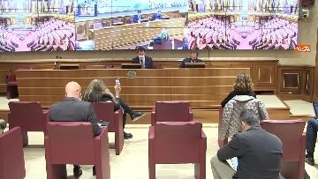 6 - Coronavirus, la conferenza stampa della Lega al Senato con Salvini e Siri