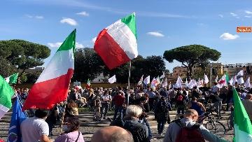 2 - Sovranisti e negazionisti Covid in piazza a Roma, le foto