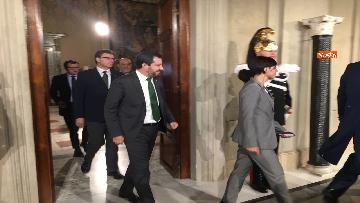 13 - Salvini al Quirinale dopo le consultazioni immagini