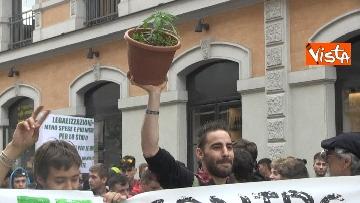 5 - Million marijuana march, il corteo per la legalizzazione della cannabis per le strade di Roma