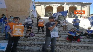 """7 - """"Gli animali non sono vite di serie B"""": la protesta delle associazioni animaliste in Campidoglio"""