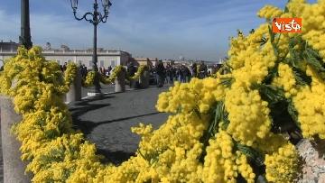 1 - 8 Marzo, il Quirinale si tinge di giallo e si riempie di mimose per la festa delle donne