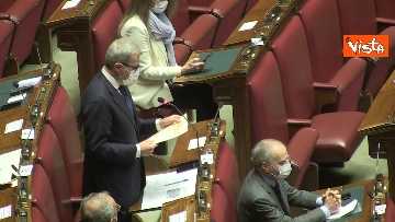 4 - Question time alla Camera con i ministri Patuanelli e Stefani. Le immagini dell'Aula