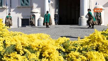 1 - Mimose fuori dal Quirinale per la festa della donna