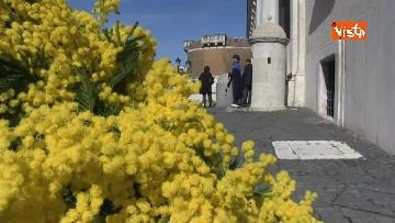 8 - 8 Marzo, il Quirinale si tinge di giallo e si riempie di mimose per la festa delle donne