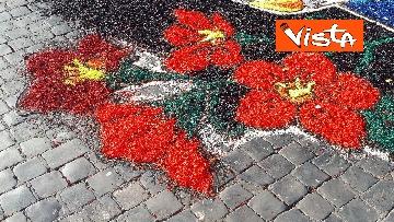 18 - San Pietro e Paolo, tappeto di colori a Via della Conciliazione per la tradizionale infiorata