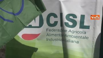 4 - Voucher, gli agricoltori in piazza Montecitorio contro il reinserimento, le immagini