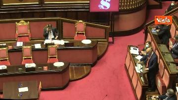 9 - Question time al Senato con il ministro Patuanelli. Le foto della seduta