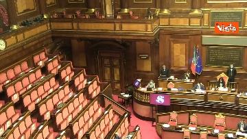 10 - Question time al Senato con il ministro Patuanelli. Le foto della seduta