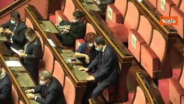 7 - Question time al Senato con il ministro Patuanelli. Le foto della seduta