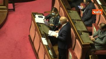 8 - Question time al Senato con il ministro Patuanelli. Le foto della seduta
