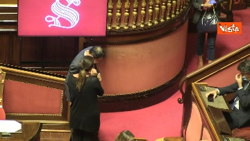 12 - Question time al Senato con il ministro Patuanelli. Le foto della seduta