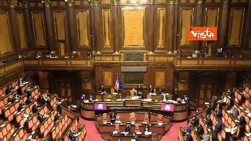6 - Informativa del ministro Di Maio nell'aula del Senato. Le foto