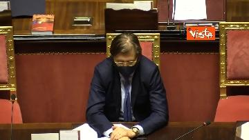 3 - Informativa del ministro Di Maio nell'aula del Senato. Le foto
